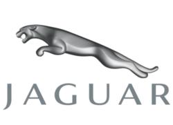 Jaguar Logo1 e13377958948511